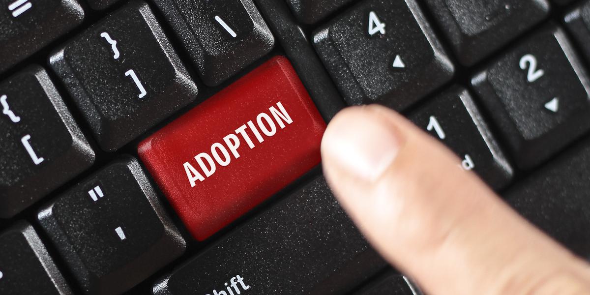 Adoptie toverwoord voor slimmer werken